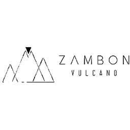 logo partenaire Zambon Vulcano